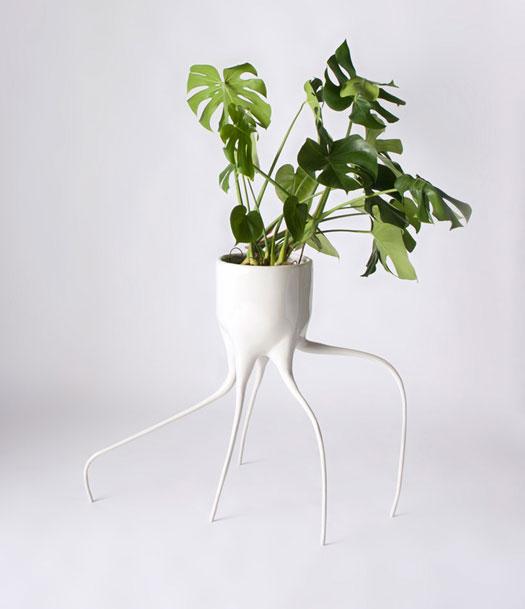 Un mostro di vaso