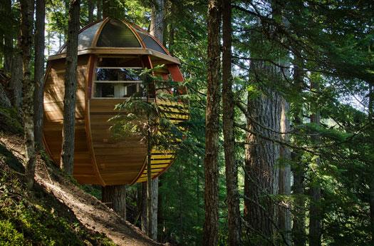 Casa sull 39 albero ecologica - Casa sull albero progetto ...